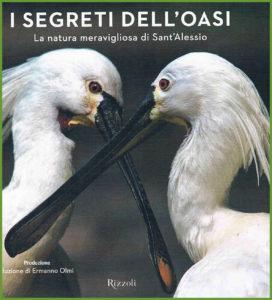 I-segreti-dellOasi-1-1